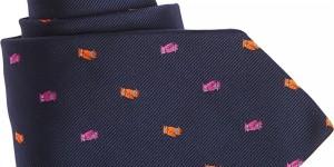 Etro Owl Tie