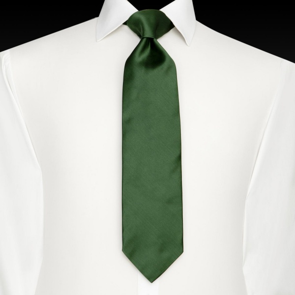 http://suitored.com/wp-content/uploads/2010/10/Thomas-Pink-Green-Tulip-Tie-2.jpg