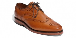 Allen Edmonds 'Park Ridge' Wingtip Shoe 1