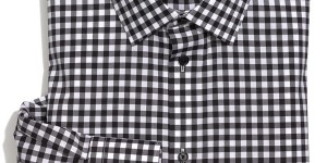 Calibrate Slim Fit Gingham Dress Shirt